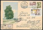 Иллюстрированная односторонняя почтовая карточка № 7-47, 1963 год. Березки. Прошла почту заказным письмом