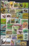 Набор иностранных марок. Флора и фауна (3). 40 гашеных марок