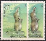 СССР 1985 год. Бухарская бурозубка (ном. 2к). Разновидность - разный цвет