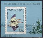 Румыния 1980 год. Пеликаны. Блок