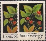 СССР 1982 год. Костяника (ном. 10к). Разновидность - разный фон