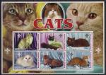 Сомали 2003 год. Породы кошек. 1 блок