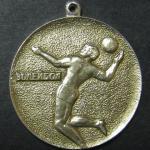 Наградная медаль. Волейбол