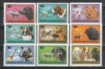 Собаки, Монголия 1978 год, 9 марок