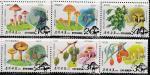 КНДР 1989 год. Грибы и ягоды, 6 гашёных марок