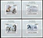 Коморы 2010 год. Фауна Антарктиды, 4 люксблока