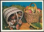 """ПК. Фотокомпозиция """"Осень"""", 26.10.1979 год, прошла почту"""