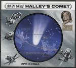 КНДР 1985 год. Комета Галлея, блок