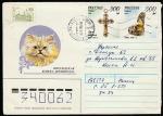 Конверт. Персидская кошка, 1995 год, прошёл почту