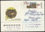Конверт. Персидская кошка, прошёл почту в 1993 году