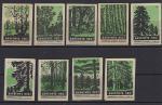 Набор спичечных этикеток. Берегите лес!  1960 год. Зеленые на серой бумаге, 9 штук