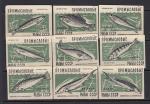 Набор спичечных этикеток. Промысловые рыбы СССР, 1959 год, темно-зеленые на белой бумаге, 9 штук