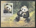 Куба 1999 год. Международная филвыставка в Пекине. Большая панда, блок (н
