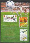 Китай 2002 год. Чемпионат мира по футболу в Японии и Южной Корее, блок (н
