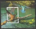 Польша 2013 год. Местные птицы, блок (н