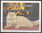 Гана 2000 год. Породы кошек. Фиолетовый перс, блок