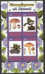 Конго 2009 год. Бонсай и грибы, малый лист