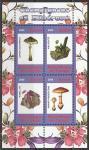 Конго 2009 год. Грибы и минералы, малый лист