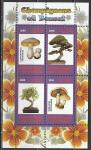 Конго 2009 год. Грибы и бонсай, малый лист