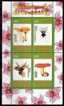 Конго 2009 год. Грибы и орхидеи, малый лист