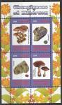 Конго 2009 год. Минералы и грибы, малый лист