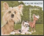 Камбоджа 1997 год. Китайская хохлатая собака, блок ((