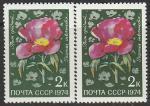 СССР 1974 год. Цветы Средней Азии. Пион. Разновидность - разный оттенок, 2 марки (4352)