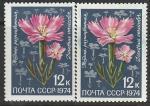 СССР 1974 год. Цветы Средней Азии. Гвоздика. Разновидность - разный оттенок, 2 марки (4355)