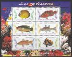 Бурунди 2009 год. Тропические рыбки, малый лист.