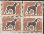 Монако 1970 год. Международная выставка собак в Монте-Карло. Собака породы доберман. квартблок.