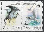 Россия 2002 год, Совместный Выпуск, РФ-Казахстан, Птицы, пара марок