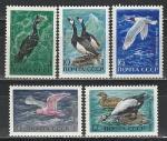 СССР 1972  год , Птицы, серия 5 марок