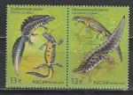 Россия 2012 год, Тритоны, пара марок, сцепка. совместный выпуск с Беларусь