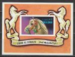 Цирковая Лошадь, Умм-эль-Кайвайн 1972 год, блок