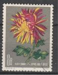 Хризантема, №585, Китай 1961, 1 гаш. марка