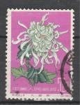 Хризантема, №575, Китай 1960, 1 гаш. марка