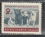 Собаки в Космосе, Болгария 1961 год, 1 марка