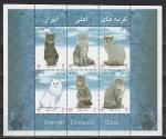 Иран 2004 год, Кошки, блок