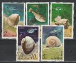 Морская Фауна, КНДР 1977, 5 гаш. марок