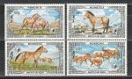 Монголия 1986 год. Охраняемые животные. Дикие лошади. 4 марки.
