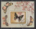 Фуджейра 1971 год, Бабочки, гашёный блок