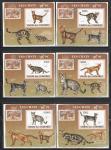 Кошки, Коморы 2009 год, 6 люкс блоков