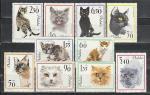 Польша 1964 год. Кошки. 10 марок.