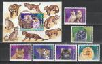 Монголия 1998 год, Кошки, 6 марок + блок.