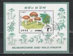 Грибы, Спецгашение, КНДР 1989 год, блок