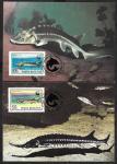 Картмаксимум. Комплект 4 шт. Стерлядь со СГ - Бухарест WWF 28.10.1994 г.