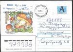 Конверт. Белый гриб, прошел почту в 2008 году. Штемпель- Москва, Казанский вокзал