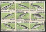 Набор спичечных этикеток. Промысловые рыбы. 1959 год. 9 шт.