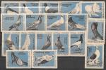 Набор спичечных этикеток. Породы голубей. 1963 год. 18 шт