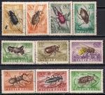 Венгрия 1954 год. Жуки. 10 марок с наклейкой